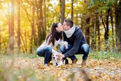 遛美好的年轻的夫妇一条狗在秋天森林里 免版税库存照片