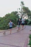 遛他们的沿散步的小狗在Umhlanga的年轻男孩晃动海滩 免版税库存图片