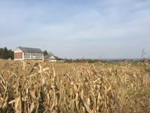 遥远的农场 库存照片