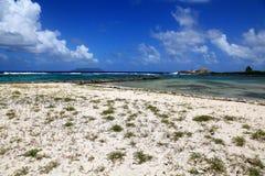 遥远的加勒比海滩 库存图片