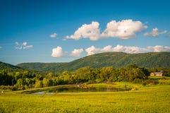 遥远的山池塘和看法在农村Shenandoah瓦尔的 免版税库存图片