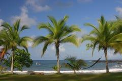 遥远的海滩一些 库存照片