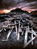 遭到海难的木头 免版税库存图片