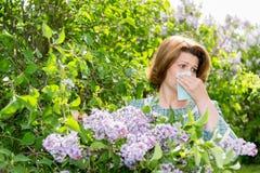 遭受关于丁香的花粉过敏的妇女 免版税库存照片