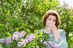 遭受关于丁香的花粉过敏的妇女 图库摄影