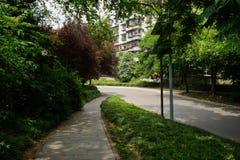 遮荫分叉的路在晴朗的夏天嫩绿的城市 图库摄影
