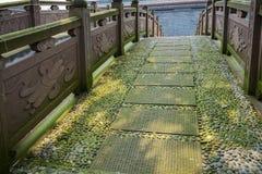 遮荫地衣隐蔽的石曲拱桥梁 库存照片
