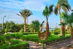 遮荫庭院在开罗,埃及 图库摄影