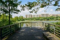 遮荫湖边在su的嫩绿的城市操刀了并且planked平台 免版税图库摄影