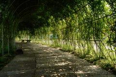 遮荫荫径在晴朗的春天中午 免版税库存照片