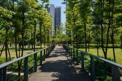 遮荫被操刀的和planked人行桥在晴朗的总和嫩绿的城市 库存照片