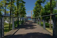 遮荫planked人行桥在晴朗的夏天现代城市 免版税库存图片