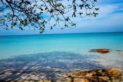 遮蔽在海滩和绿松石海的树 免版税库存照片