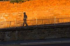 遮蔽步行沿着向下倾斜对红砖墙壁 免版税库存图片