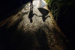 遮蔽美丽的新娘和英俊的新郎跳舞剪影  库存图片