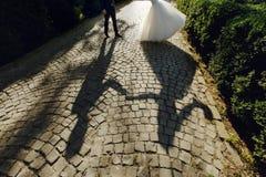 遮蔽美丽的新娘和英俊的新郎跳舞剪影  免版税库存照片