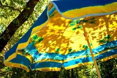 遮阳伞在一棵树下在一个晴天 免版税图库摄影