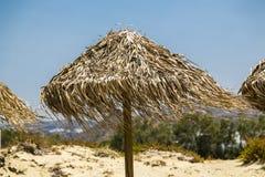 遮阳伞由与吹的叶子的芦苇制成 图库摄影