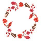 邀请设计、卡片等等的水彩花卉框架 图库摄影