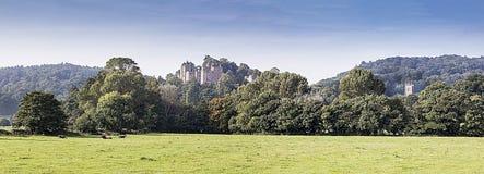 邓斯特城堡和教会全景  免版税库存照片