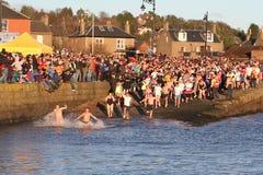 邓迪,英国- 1月1日: 参与在Broughty轮渡的新年Dook的游泳者怀有在2013年1月1日的邓迪。 每 库存照片