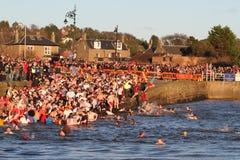 邓迪,英国- 1月1日: 参与在Broughty轮渡的新年Dook的游泳者怀有在2013年1月1日的邓迪。 每 免版税库存图片