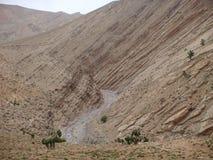 那一条干燥的河在Maroc横渡地图集的壮观的山 免版税库存照片
