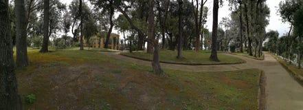 那不勒斯-别墅科隆纳Bandini公园概要  免版税图库摄影