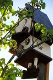 那么在一appletree的上面的舒适鸟舍在春天庭院 免版税图库摄影