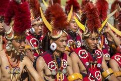 那加兰邦,印度犀鸟节日  免版税库存图片