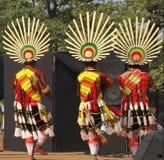 那加兰邦,印度纳卡人部落  免版税库存图片