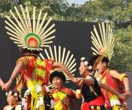 那加兰邦,印度纳卡人部落  库存照片