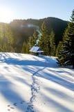 那导致在山的一个木村庄的雪足迹 免版税库存照片