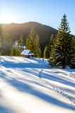 那导致在山的一个木村庄的雪足迹 免版税库存图片