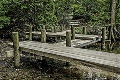 那导致一条道路在森林的码头 免版税库存图片
