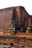 那烂陀寺Mahavihara破坏主要寺庙特写镜头 免版税库存图片