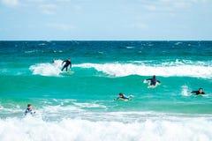 邦迪滩的冲浪者 库存照片