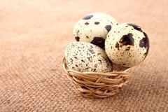 邪恶的篮子用鹌鹑蛋 图库摄影