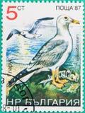 邮票在俄罗斯联邦打印了 免版税库存照片