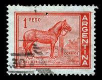 邮票在有Caballo拉丁美洲各国的人马的图象的阿根廷打印了 免版税图库摄影