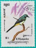 邮票在R打印了 P 柬埔寨 库存照片
