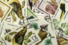 邮票背景 免版税库存图片