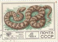 邮票`蛇蝎` 免版税库存照片