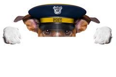 邮件狗 免版税图库摄影