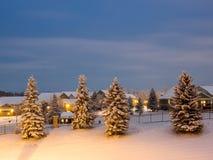邻里雪场面在蓝色小时 免版税图库摄影