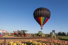 郁金香、拖拉机和一个热空气气球 免版税图库摄影