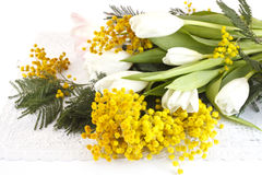 从郁金香和一个含羞草的春天花束在白色背景 免版税图库摄影