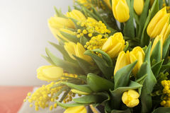 郁金香和含羞草明亮的春天花束开花 免版税库存照片