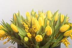 郁金香和含羞草明亮的春天花束开花 库存图片