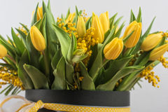 郁金香和含羞草明亮的春天花束开花 免版税库存图片